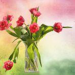 ein Strauß Tulpen