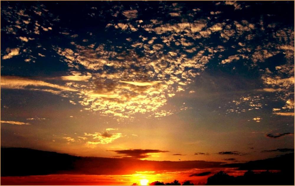 ein Stück vom Himmel....