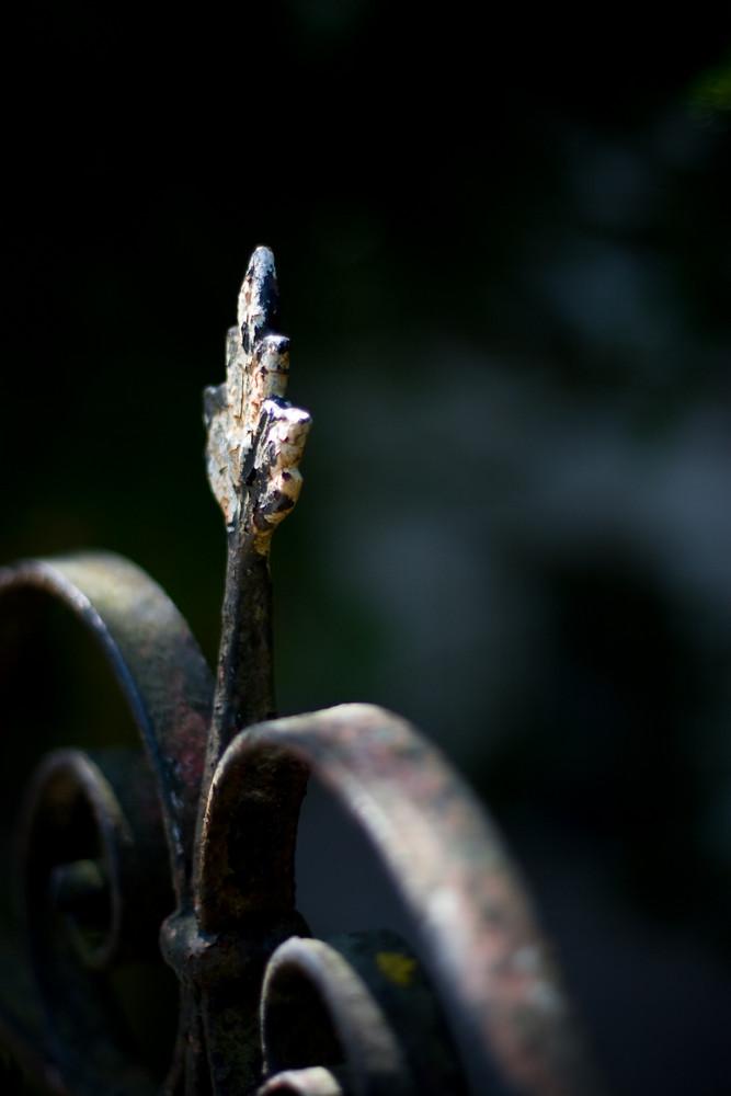 ein Stück vom Zaun