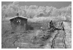 Ein Tag im Moor - 8