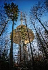Ein Turm Steht im Walde