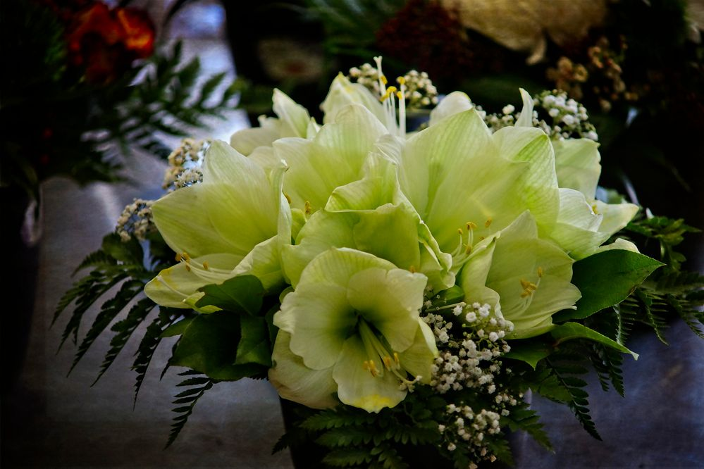Ein ungewöhnlicher Blumenstrauss