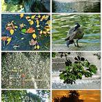 Ein warmer, schöner Herbsttag....