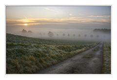 ein Weg in den Nebel