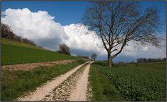 Ein Weg ins Land
