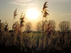 Ein 'weicher' Sonnenuntergang
