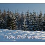 Ein Weihnachtswald...