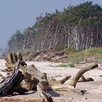 Ein wilder Strand