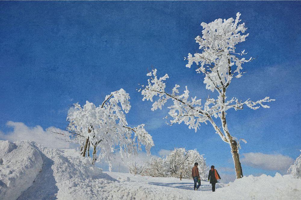 ein Winter -TRAUM-