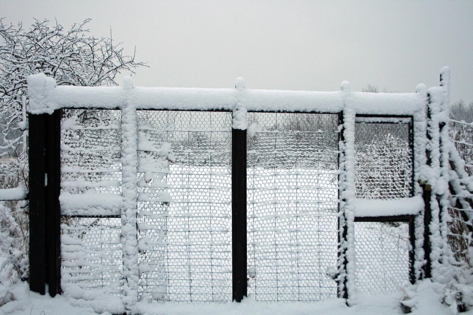 Ein Winterbild muss sein