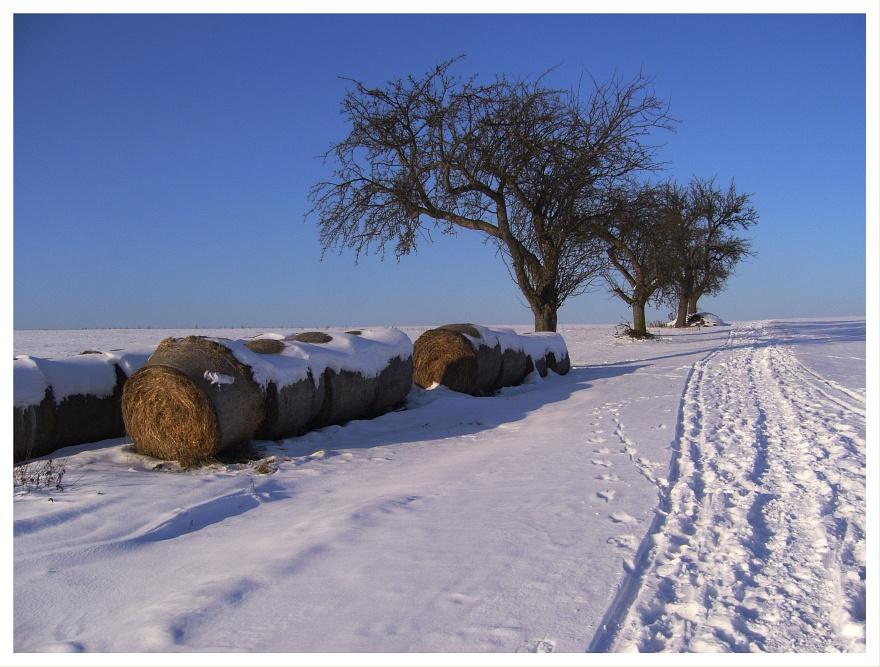 Ein Winterfoto