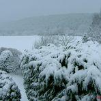 """Ein Wintergruß, vom Sturmtief: """"Eberhard"""".....II. Foto"""