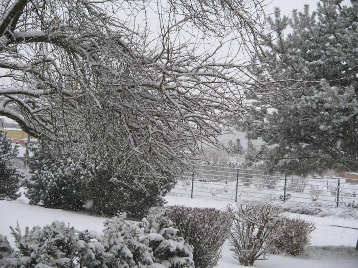 Ein winterlicher Blick aus meinem Stubenfenster
