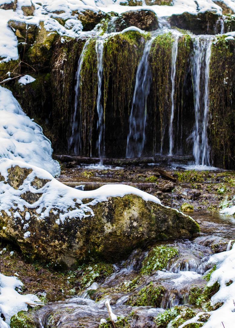 Ein winterlicher Wasserlauf