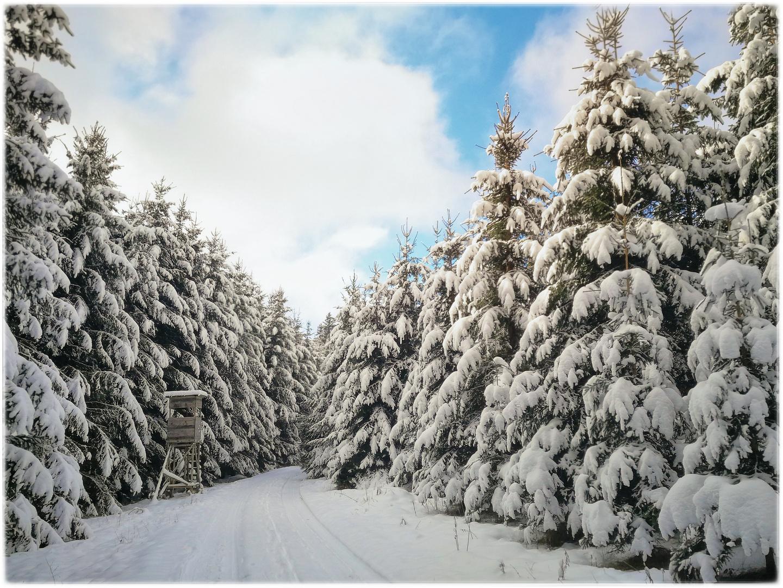 Ein Wintermärchen