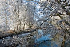 ein Wintermorgen am Fluss