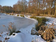 Ein Winternachmittag an der Nette
