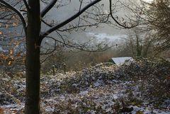 Ein Wintersonntag