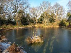 Ein Wintertag im Berggarten...