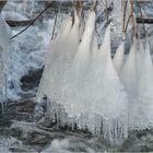 Ein Winterwasserwunder