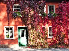 Ein Wohnhaus in voller Farbenpracht