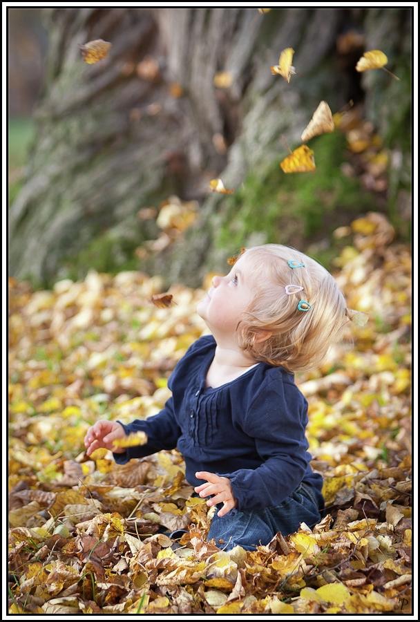 Ein wunderschöner Herbsttag 1