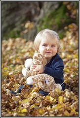 Ein wunderschöner Herbsttag 2