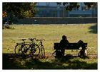 Ein wunderschöner, sommerlicher Herbsttag war das heute...,