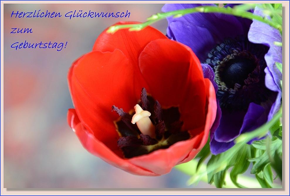 Ein Wunderschöner Tag Foto Bild Gratulation Und Feiertage