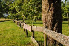 Ein Zaun aus Holz