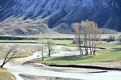 Ein Zufluss des Murat. Türkei             .DSC_4443