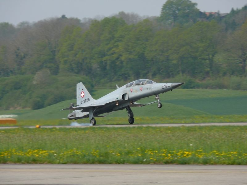 Einbein Landung einer Tiger F-5