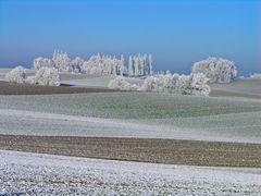 Eindeutig Winter