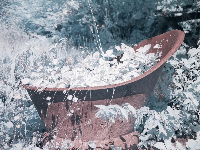 Eine alte Badewanne ...
