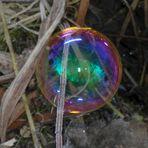 """Eine aufgespießte Seifenblase auf """"gefrostetem"""" Grashalm"""