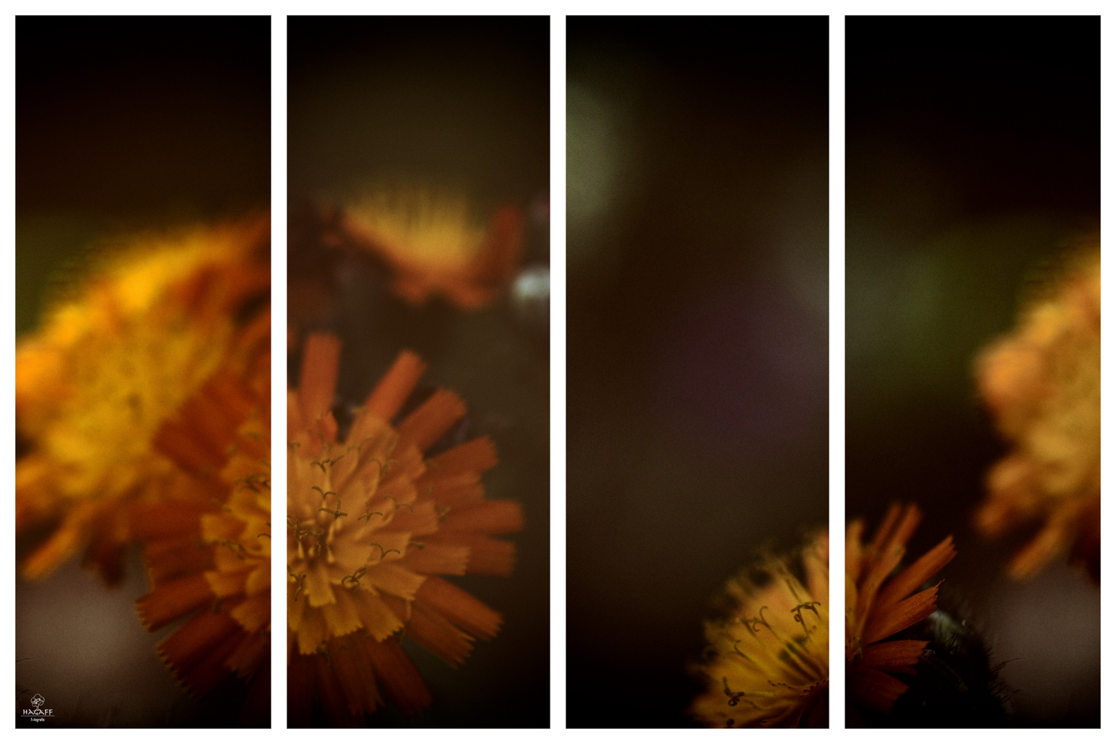 Eine Collage