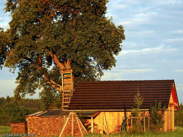 Eine einsame Hütte in der Morgensonne