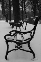 eine einsame parkbank im winter 09
