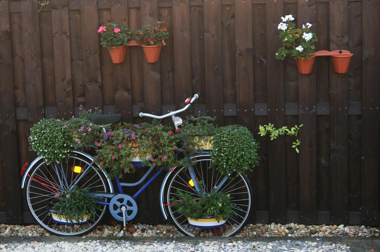 Eine Fahrrad Idee Für Mich Für 2013 Foto Bild Autos