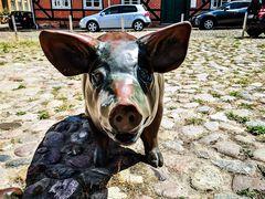 Eine große Schweinerei....