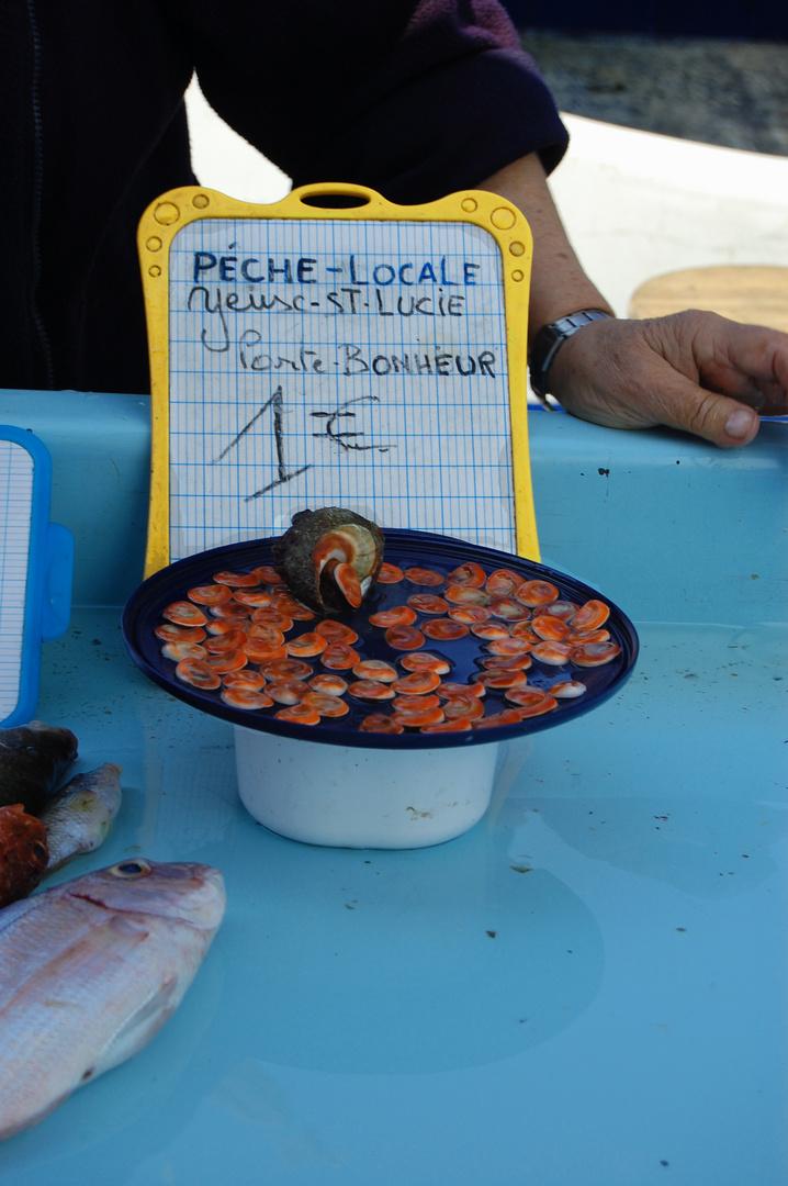 Eine Handvoll Glück für 1€