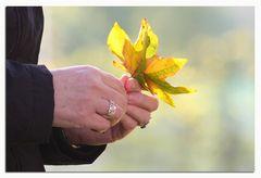 ...eine Handvoll Herbst