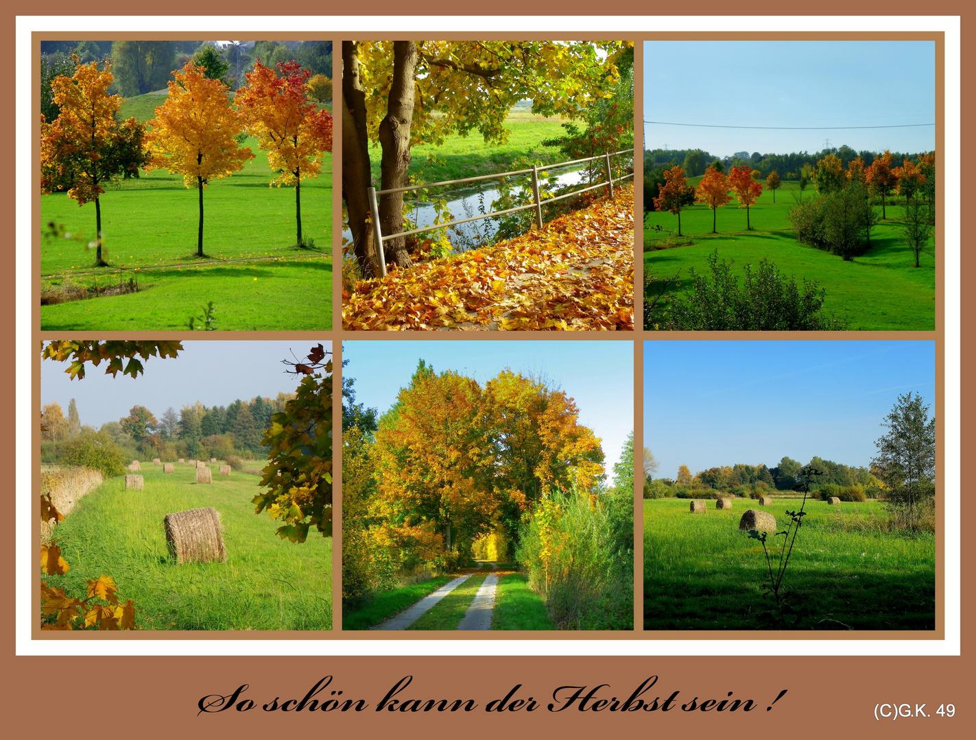 Eine Herbst Collage !