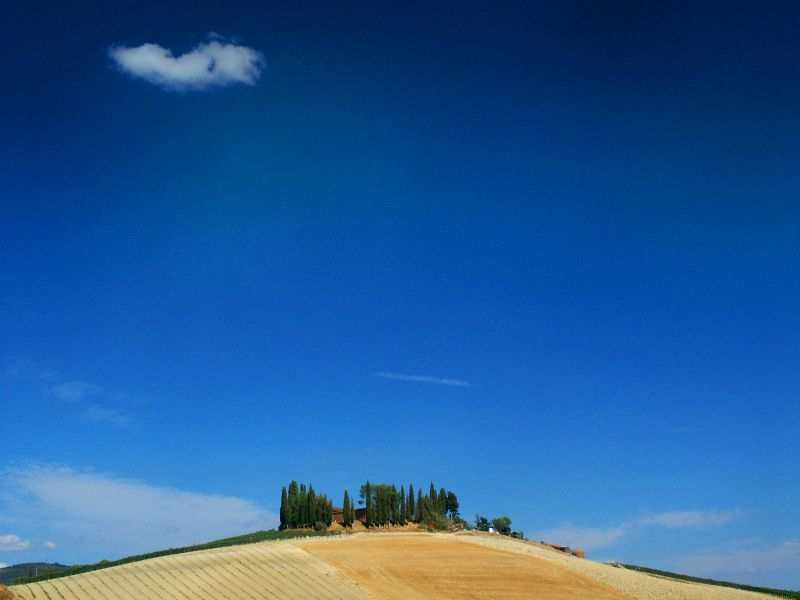 "Eine ""Insel"" im Chiantital (Toskana)"