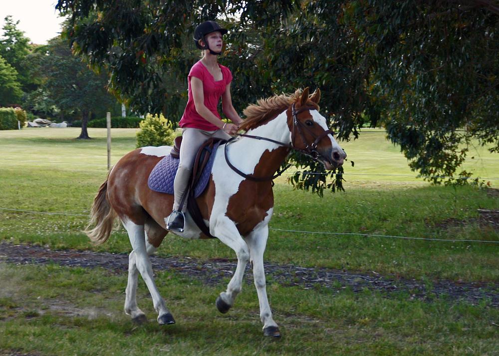 ..eine junge Reiterin..