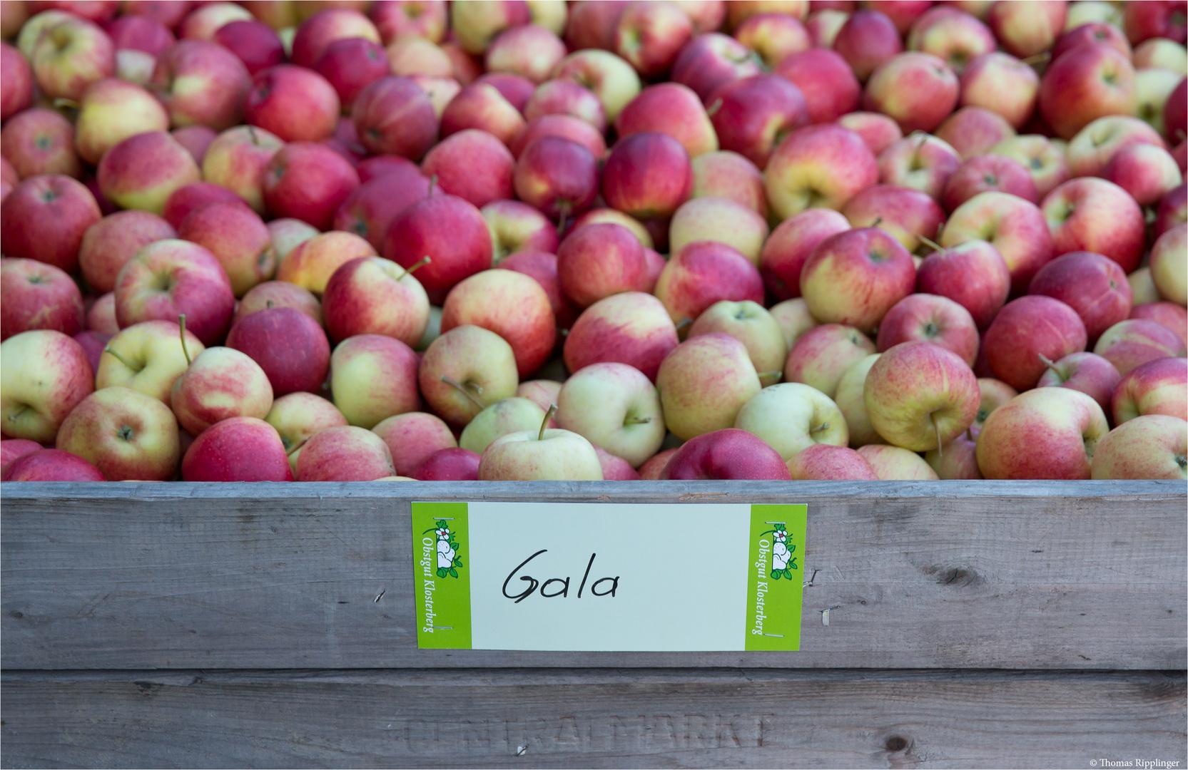 Eine Kiste voller Äpfel...