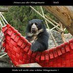 Eine kleine Bärengeschichte in Fünf Teilen... (1)