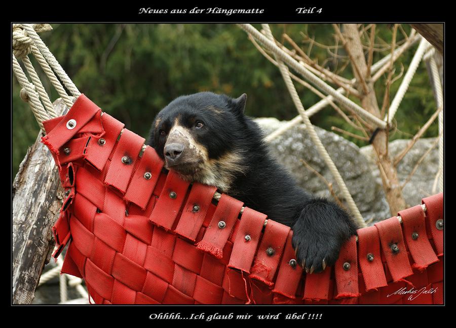Eine kleine Bärengeschichte in Fünf Teilen... (4)