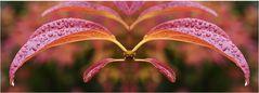 Eine Libelle aus roten Blättern