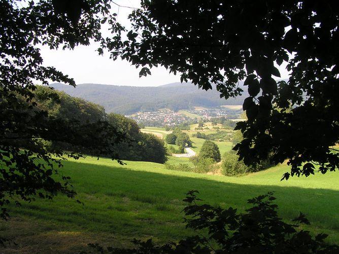 Eine Lichtung im Odenwald die II